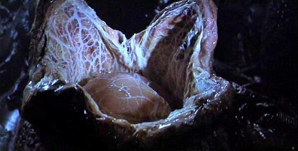 Alien_le_8eme_passager_1979_Alien_4.jpg